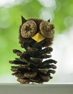 Six in the Suburbs: Pine Cone Owls