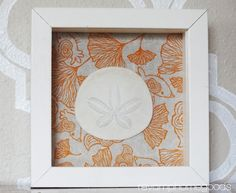 Want to make one of these w/the perfect sandollar found at beach!!DIY Framed Sanddollar project