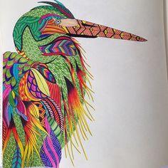 Partilhado com @Instagrab #milliemarotta #animalkingdom #adultcoloring