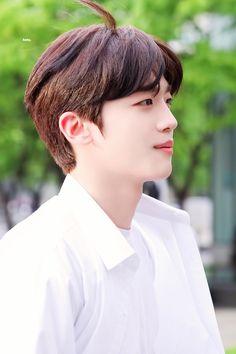 Korean Boy Bands, South Korean Boy Band, Dis School, Yohan Kim, Produce 101, Taekwondo, K Idols, Korean Singer, Boyfriend Material
