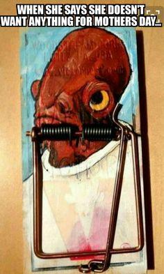 It's a trap!It's a trap!It's a trap!It's a trap!It's a trap!It's a trap!It's a trap!-It's a trap!It's a trap!It's a trap!It's a trap! Cultura Pop, Cultura Nerd, Star Wars Art, Star Trek, Printable Poster, The Force Is Strong, Star Wars Humor, Star Wars Puns, Geek Chic