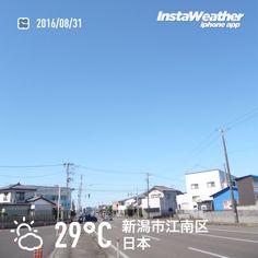 おはようございます! 台風一過、青空めいっぱいの8月最終日です〜♪