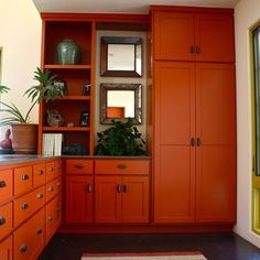 """terra cotta colored cabinets 