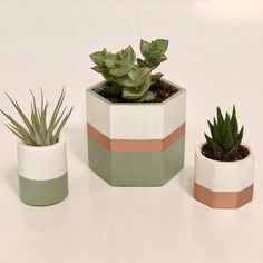 3 Green + Rose Gold Concrete Planters Flower Pot Art, Small Flower Pots, Ceramic Flower Pots, Flower Planters, Diy Concrete Planters, Cement Pots, Wall Planters, Painted Plant Pots, Pottery Painting Designs