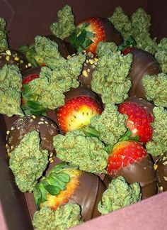 I wish upon my luckiest star in the galaxy that I can spend a day with you V., and share three of my absolute favorite things on this earth. Chocolate, strawberries and cannabis! Rauch Fotografie, Stoner Art, Weed Art, Puff And Pass, Smoke Weed, Vape Smoke, Stoner Girl, Weed, Stoner Humor