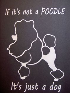 Poodle Laptop Window Vinyl Car Decal by Overhemd on Etsy, $5.49                                                 youtube mp3