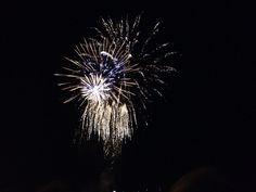 Whitley Bay fireworks, Nov 2014 Fireworks, Dandelion, Flowers, Plants, Dandelions, Florals, Planters, Flower, Blossoms