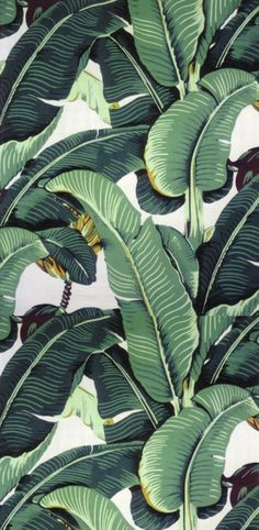 I have always had a mini obsession with this Martinique banana leaf wallpaper. It has such a great old Hollywood feel. It's in the Beverly Hills Hotel too.