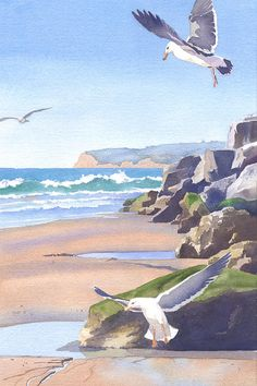 Three Seagulls At Coronado Beach by Mary Helmreich - Three Seagulls At Coronado Beach Painting - Three Seagulls At Coronado Beach Fine Art Prints and Posters for Sale Beach Watercolor, Watercolor Pictures, Watercolor Landscape, Landscape Art, Landscape Paintings, Coronado Beach, Seascape Paintings, Beach Paintings, Beach Print