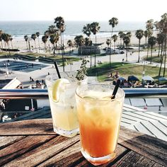 Cocktails at Hotel Erwin, Venice Beach