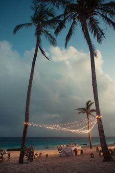 Setup the perfect romantic vibe with hanging twinkle lights that are draped from the surrounding palm trees.