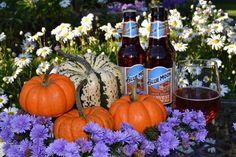 "952 Likes, 15 Comments - @oopsie_daysie on Instagram: ""🍻#cheers #beer #beertime #brew #bluemoon #pumpkin #pumpkinale #harvest #fall #autumn #drink #drinks…"""