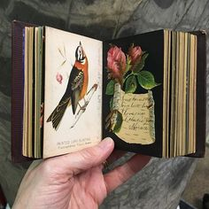 For today's #tinyTuesday post, here is a recent acquisition that seemed appropriate for the post-holiday season. This little volume was given as a Christmas gift in 1875 by a father to his young daughter, Linda Johnston. The assorted cards inside are all brightly colored and include a mix of calling cards and collectible cards of birds, landscapes, and flowers. Linda had her friends inscribe many of the pages, using the book as an autograph or friendship album (the dates on their…