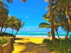Porto Rico beaches_2663  #beach #beaches #wallpaper  Porto Rico  Zugang zu unserem Blog finden Sie viel mehr Informationen    #placestoknow #波多黎各 Punta Cana, Island Life, Luxury Life, Luxury Travel, Wonderful Places, Caribbean, Tours, America, Water
