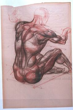 Burne Hogarth - Chalk art    A study of the human muscle by hogart. Great detail and shading we can clearly see the prononced muscles of the sitting man.    (burnehogarth, 2010)