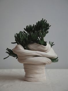 Standing vessel with twisted torso , 2016  Ceramic with Crassula Gollum