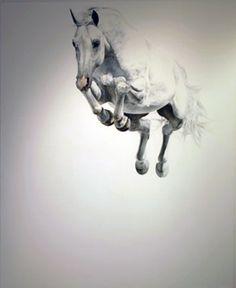 Springfall White - Michael Zavros