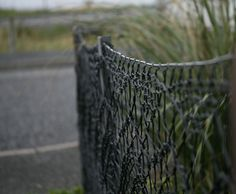 Shetland lace, the work of Anne Eunson of Hamnavoe, Burra. The fence is fashioned from strong black twine (the same kind that is used to make fishing nets) and Anne knitted it up on specially adapted curtain poles. It took her about three weeks to knit enough lace to surround her front garden, using a 23 stitch repeat of a familiar Shetland lace pattern.