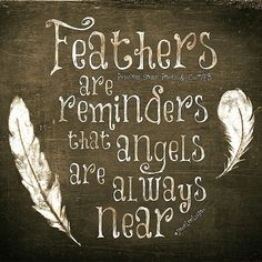 Feathers....I knew it!  This is my nickname . Feather Ann
