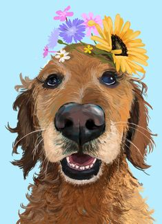 Golden Retriever portrait by Kath. Visit my Etsy shop for more. #goldenretriever #dogportrait Dog Portraits, Animal Drawings, Fur Babies, Biscuit, Hand Lettering, Your Pet, Unique Gifts, My Etsy Shop, Digital