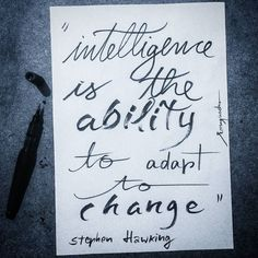 """""""Intelligence is the ability to adapt to change"""" (Stephen Hawking). A whole life of trial and error..."""
