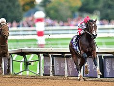 Songbird delivered a beautiful performance Oct. 31, 2015, in the $2 million 14 Hands Winery Breeders' Cup Juvenile Fillies (gr. I), controlling the pace throughout and winning by 5 3/4 lengths over Rachel's Valentina.