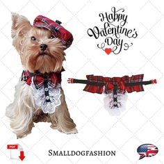 """""""Happy Valentine's Day! ❤❤❤"""" Girl Dog Clothes, Small Dog Clothes, Pekinese, Dog Clothes Patterns, Hat Patterns, Pet Dogs, Pets, Dog Pattern, Girl And Dog"""