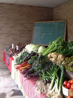 New City Urban Farm