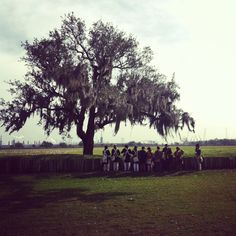 Battle of New Orleans reenactment at Chalmette Battlefield. New Orleans History, Battle Of New Orleans, War Of 1812, Louisiana, Documentaries, Dolores Park, Colors, Travel, Outdoor
