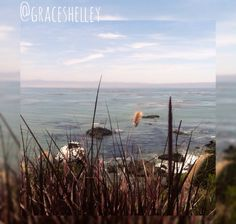 """""""The Bluffs"""" Cayucos, California Grace Shelley's Photography"""