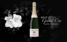 #Champagne #Blancdeblancs #Cramant #GrandCru