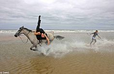 horse legs | It's horsesurfing - a shore winner of an extreme sport | Mail Online