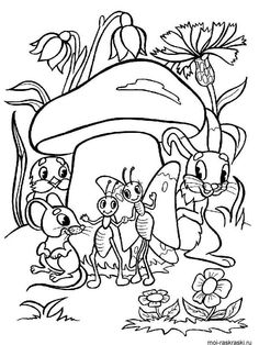 images of mushrooms coloring pages Cat Coloring Page, Colouring Pages, Adult Coloring Pages, Coloring Pages For Kids, Coloring Sheets, Coloring Books, Mushroom Images, Rangoli Border Designs, Drawing Projects