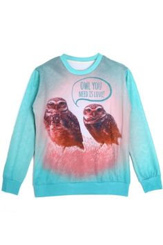 Owl You Need is Love Sweatshirt