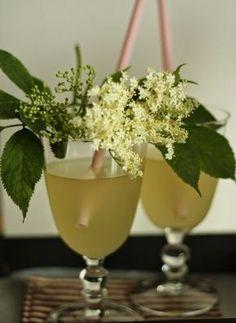 Must-Try Czech Summer Beverages Elderflower, Summer Drinks, Hurricane Glass, Food Hacks, Food Tips, Drinking, Planter Pots, Food And Drink, Healthy Recipes