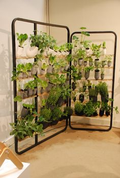 Ikea socker plant stand decorating pinterest plant - Biombos exterior ikea ...