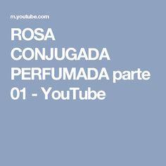 ROSA CONJUGADA PERFUMADA parte 01 - YouTube