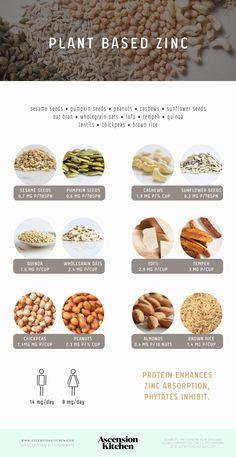 Plant based sources of zinc                                                                                                                                                                                 More