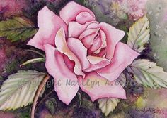 ACEO CARD ROSE  Limited Edition of 10 on by OriginalSandMore