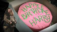 How To Make Hagrid S Iconic Harry Potter Birthday Cake Recipe Harry Potter Birthday Cake Harry Potter Cake Hagrid Harry Potter Cake