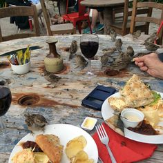 Feeding the little sparrow #birds on St Martins island - Isles of Scilly at the Seven Stones Pub! A perfect September afternoon.