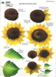 Donna Dewberry One Stroke Laminated Reusable Teaching Guide -Sunflower One Stroke Painting, Tole Painting, Fabric Painting, Painting & Drawing, Painting Lessons, Art Lessons, Painting Tips, Donna Dewberry Painting, Sunflower Art