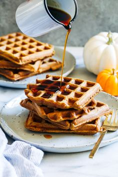 Whole Grain Pumpkin Spice Waffles- made in just one bowl, these healthy pumpkin waffles are deliciously light and fluffy. They can easily be made gluten-free and vegan too! These are the kind of pumpkin waffles that will have everyone begging for breakfast. They're light, fluffy with crisp edges, and have just enough spice to make …