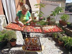 tendedero deshidratador solar de alimentos