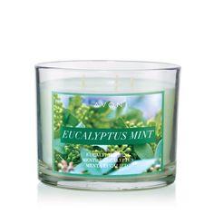 Eucalyptus Mint Candle | Shop 24/7 www.youravon.com/cjsonline