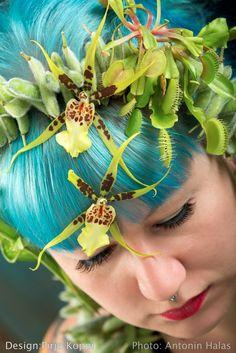 Pirjo Koppi - Floral Fundamentals