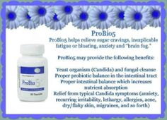 "Do you suffer from sugar cravings, inexplicable fatigue or bloating, anxiety or a ""brain fog""? Candida Symptoms, Candida Yeast, Candida Diet, Flora Intestinal, Best Probiotic, Grape Seed Extract, Pink Drinks, Brain Fog, Best Natural Skin Care"