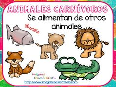 Tipos de animales claseficación (7) Teaching Activities, Teaching Science, First Grade Science, Free Frames, Animal Science, Colouring Pics, Welcome To The Jungle, Farm Theme, Too Cool For School