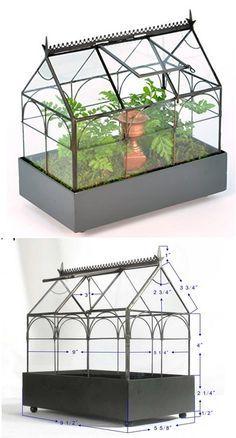 H Potter Plant Terrarium Wardian Case