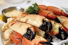 Foods To Eat While in Florida.  Florida Stone Crab Is also famous in Florida but it is in a seasonal occasion, they are only harvested from mid-May up to mid October. These delicious claws are always in high demand from May to October. The stone Crab is steamed or boiled, and then cracked and chilled some of the restaurants in Florida also served it with mushroom sauce.